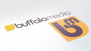 Buffalo Media branding & design