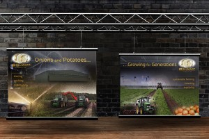 Collmart Growers 8x6 rugby box display panels