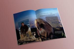 High Definition magazine spread 3