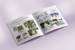 Mimo brochure pages 2